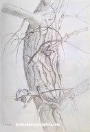 Aquarellstift auf Papier, 20x30cm (2015)