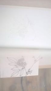 04_Durchpausen_Zeichnung