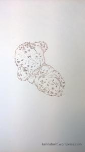 Amorphophallus_vogelianus_s_n_Tusche-1-1