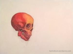 Anatomische_Studie_Schädel-1