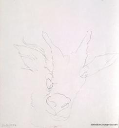 Bleistift auf Papier, 20x20cm