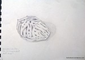 Bleistift auf Papier, 15x20cm (2015)