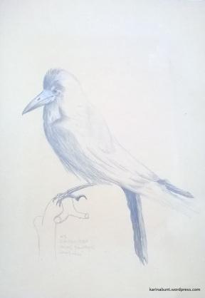 Bleistift u. Farbstift auf Papier, 35x50cm (2017)