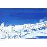 verschneiter Berghang mit vereinzelten Nadelbäumen