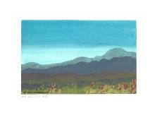 Bergketten mit Blumenwiese im Vordergrund